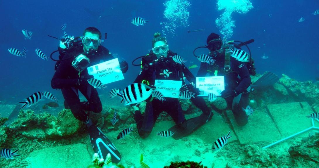 Voluntarios sosteniendo carteles durante su voluntariado de conservación de tiburones en Fiyi.